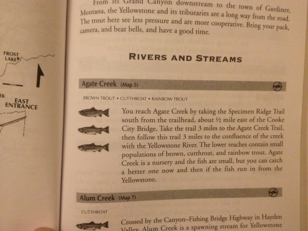 Brown Trout are indeed found at Agate Creek.